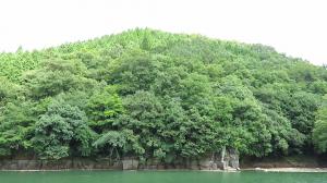 九州の山城、豊後法螺貝城、岡城の支城、外観